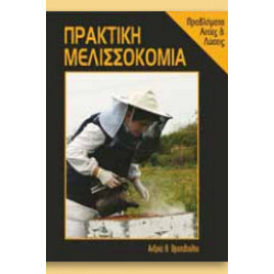 Practical Beekeeping Problems and Causes Solutions